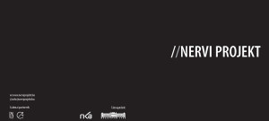 Nervi exhibition in Budapest